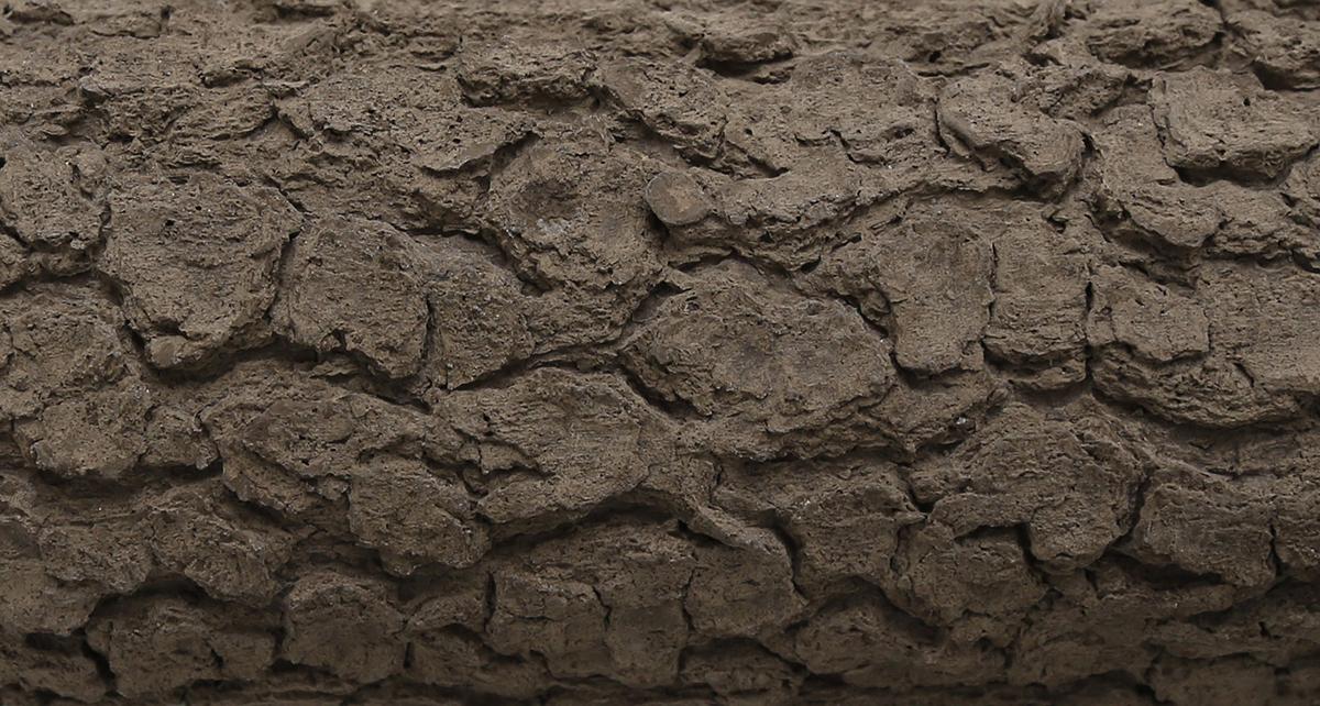 Topologies: Ciment fondue close-up / 2014