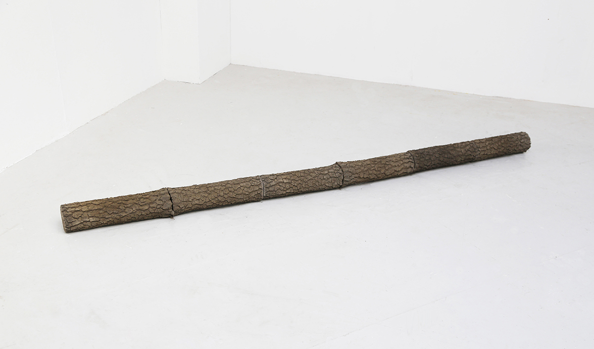 'Topologies', Cement Fondu, 240cm x 16cm, Cast from the trunk of a living tree